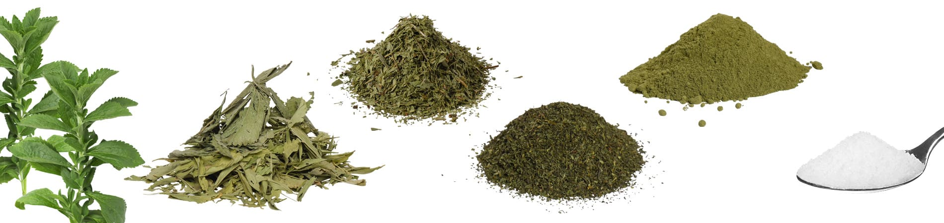 High quality plant-based Stevia raw materials and extracts