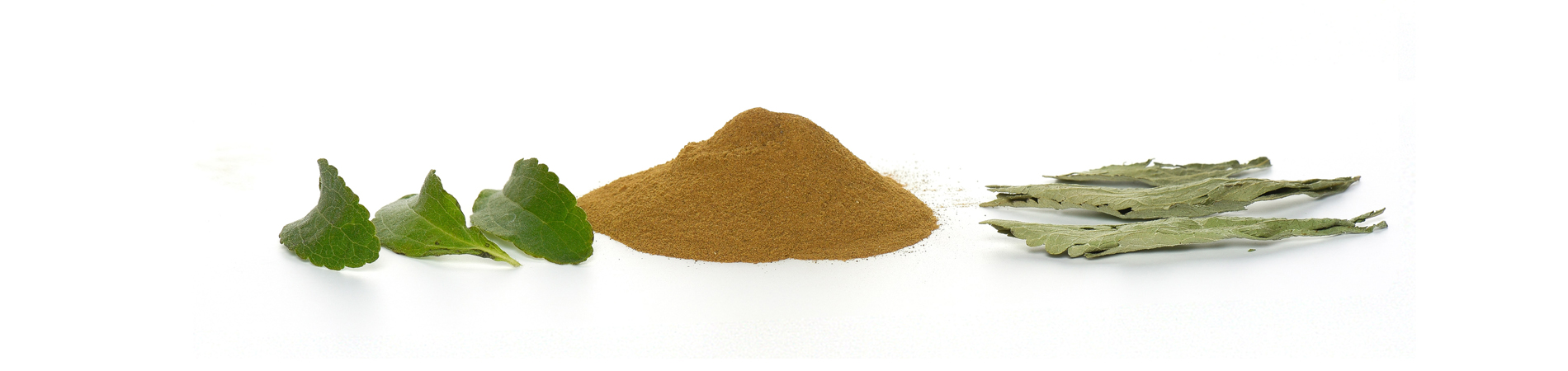 Stevia instant - 100% natural organic quality without additives.