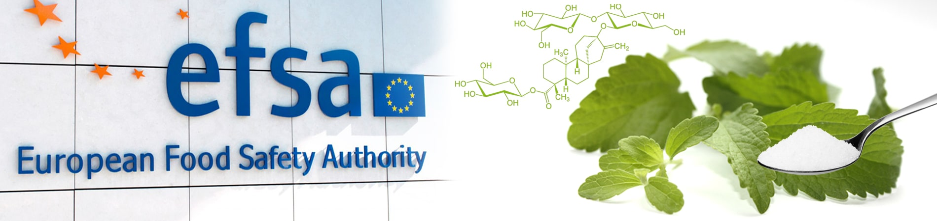 Die Zulassung von Stevia_mit_Blaettern_Zuckerloeffel und chemischer Aufbau