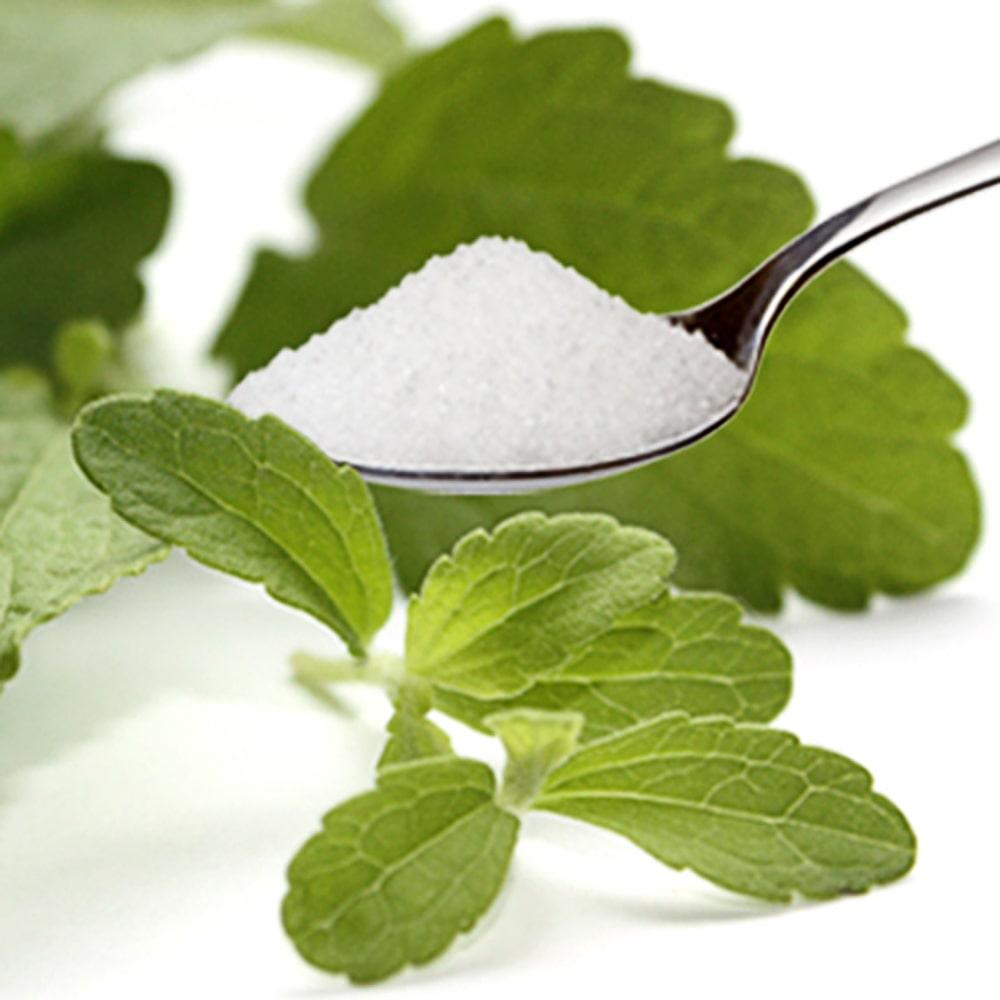 Stevia Pulver (Steviosid) Extrakt aus 100% Stevia, rein, weiß