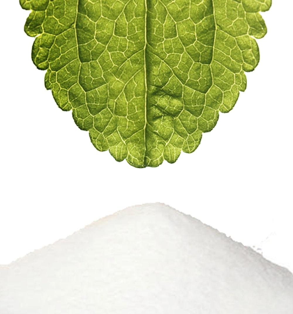 Stevia Blatt und weisses Stevia Extrakt Pulver Steviaolglykoside