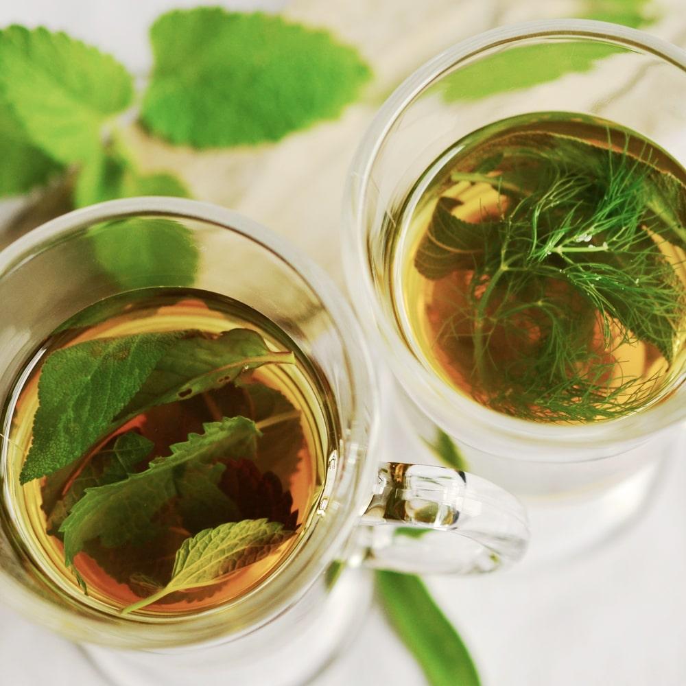 Tee mit Stevia Blättern gesüsst